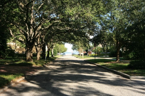 Bayshore Beautiful Neighborhood Tampa