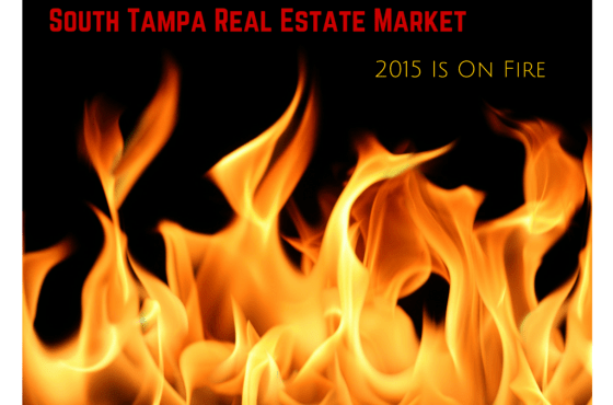 South Tampa Real Estate Market