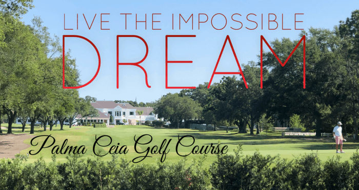 Palma Ceia Golf Course Home